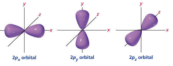 Shapes of Orbitals and Sublevels